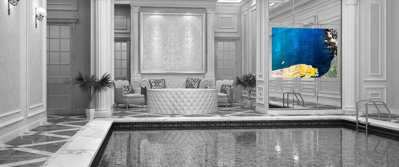 Mirror TV Spectra pool